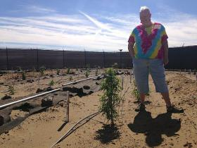 Growing marijuana outside is a tricky venture, as farmer Susy Wilson can attest to.