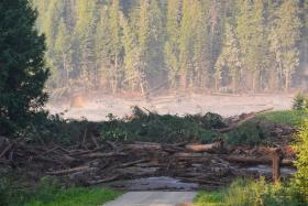 Silty water from the breached Mount Polley Mine dam floods a downstream creek and road Monday.