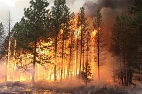 Is this year's fire season the worst it has ever been? New research suggests it's not.