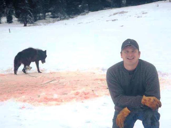 Note: We have posted edited and unedited versions of this photo. The anti-trapping group Footloose Montana reposted this photo of Idaho trapper Josh Bransford. The image has since spread to other environmental websites, inciting a furor.