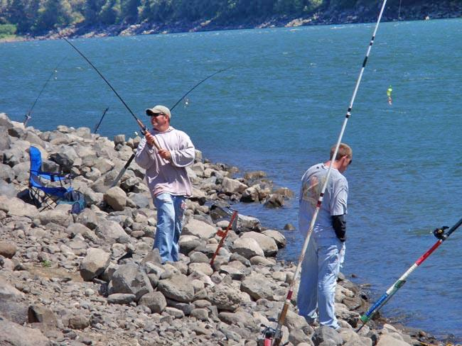 An angler casts into the Columbia River below Bonneville Dam in 2010.