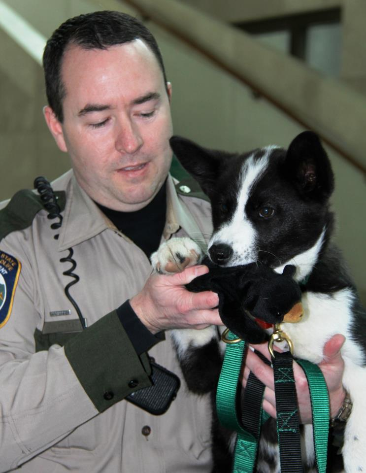 Officer Dustin Prater and his new partner Spencer. Yes, Spencer has a stuffed bear in his mouth.