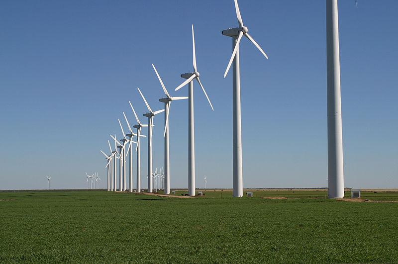 A Texas wind farm.