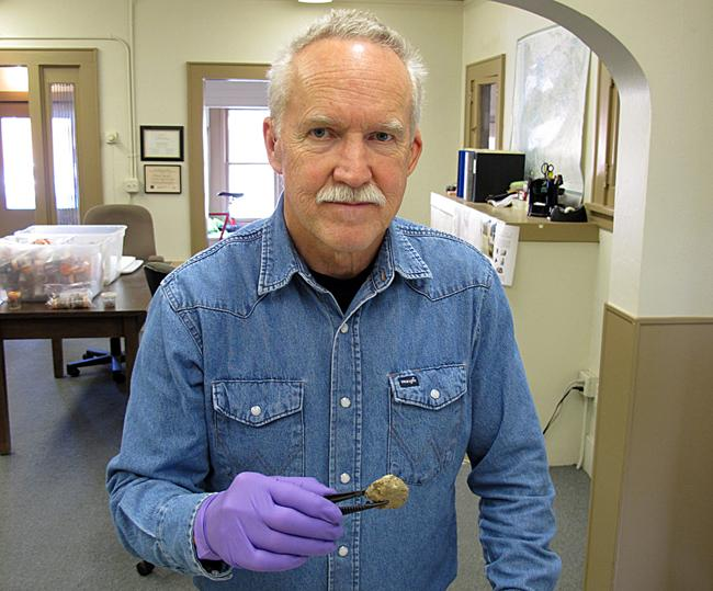 Archaeologist Dennis Jenkins holds dried feces taken from Oregon's Paisley Caves.