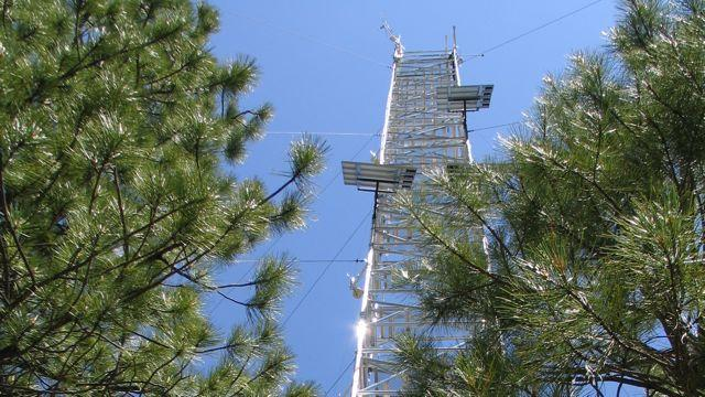 This tower in a ponderosa pine forest near Sisters, Ore., gathers data on forest productivity and soil processes that influence the carbon dioxide and water vapor exchange with the atmosphere.