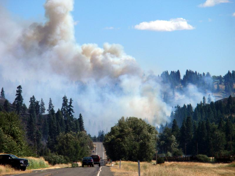 View of the Taylor Bridge fire near Cle Elum, Wash.
