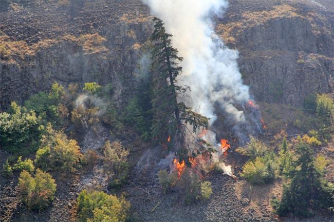 Gusts of up to 30 miles per hour have made containing the Taylor Bridge Fire more difficult.