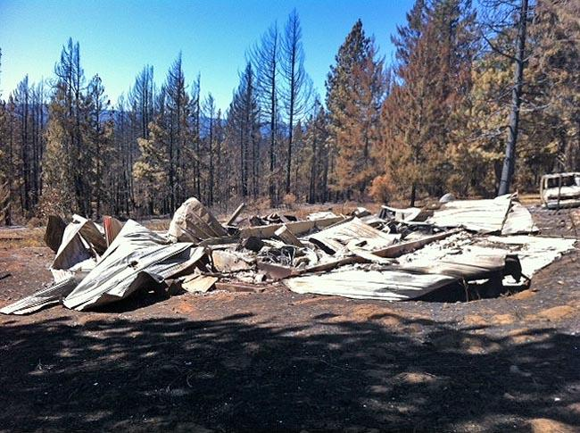 Trees burned by wildfires can pose big risks to property owners.