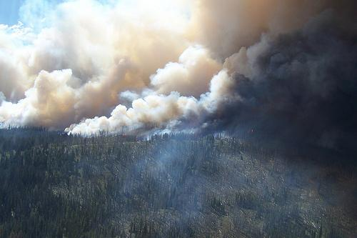 There have been more than 1,000 separate forest fires in Idaho this year.