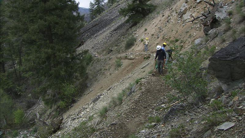 Some trails in the wilderness give little room for hikers to go around blocked section of trails.