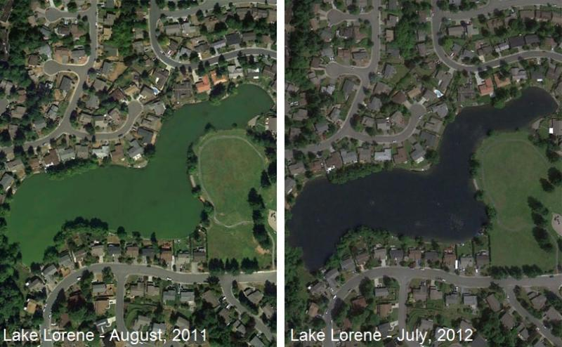 Satellite pictures from Google Earth show Lake Lorene before and after the algae control treatment.