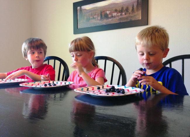 From left to right, Ben, siblings Berit and Cannon Blankenship of Richland, Wash., all love blueberries.
