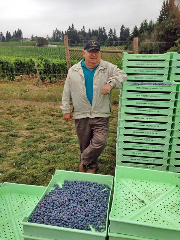 Roy Malensky, of Oregon Berry Packing, says he can track each container of blueberries back to the original field. He grows and ships Oregon blueberries around the globe.