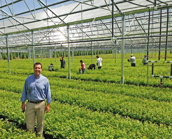 Cort Brazelton, of Fall Creek Nursery near Eugene, Ore., show off his brand new greenhouse carpeted with small blueberry plants nearly ready for planting in the fields of Mexico and Peru.