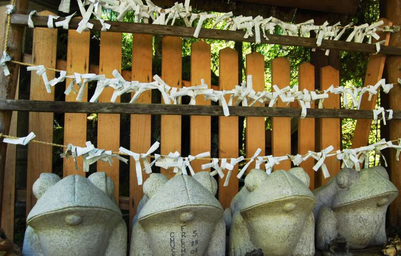 There are many frog sculptures around the shrine. Rev. Barrish said they bring good luck. Here frogs stand in front of hundreds of O-mikuji. O-mikuji are fortunes left by followers.