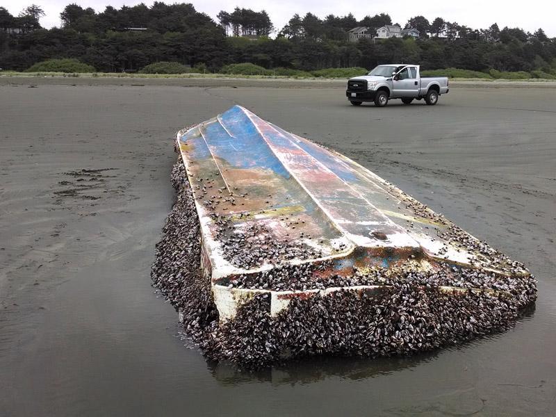 This skiff - suspected Japanese tsunami debris - was found Thursday near Moclips, Wash.