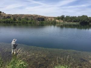 Chet Dixson fishes at Rock Lake in Eastern Washington. Rock Lake is the largest natural lake in the state and is now being stocked with Puget Sound steelhead.