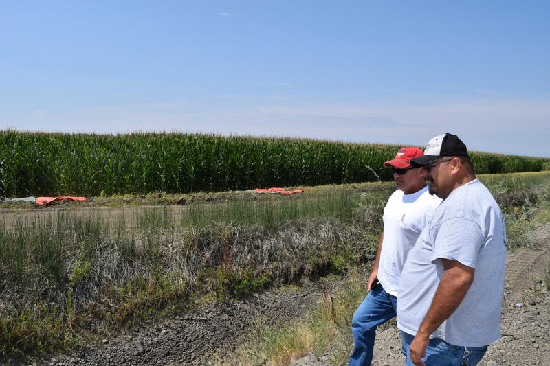 Irrigation manager Larry Nelson assesses a dry ditch with a colleague from the BIA - in the background, lush corn fields get their water from another source.