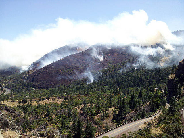 Last summer's Rowena fire.