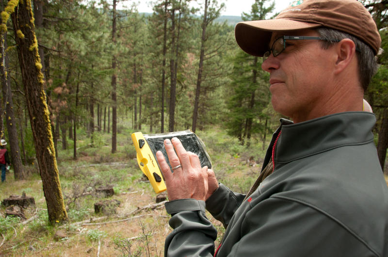 Reese Lolley enters information into an application that helps forest managers decide which trees to cut down and which trees to leave when they're thinning forests. The goal is to restore the areas to their natural conditions.