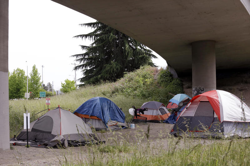 Tents line a small green space below Interstate 90 and a short walk to a homeless area known as the Jungle Tuesday, May 17, 2016, in Seattle.
