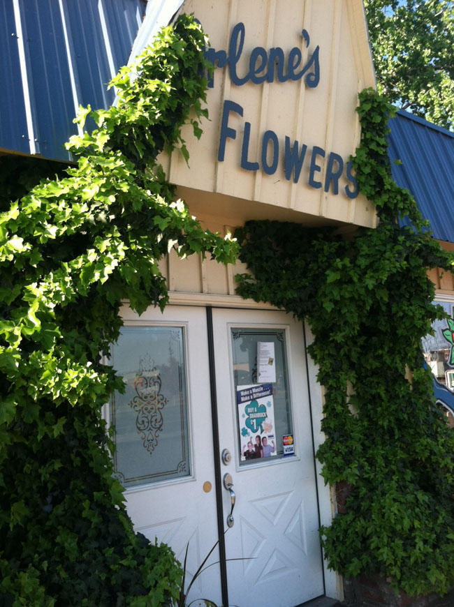 The owner of Arlene's Flowers in Richland refused to do the flowers for a gay couple's wedding. Tomorrow she'll appear before the Washington Supreme Court.