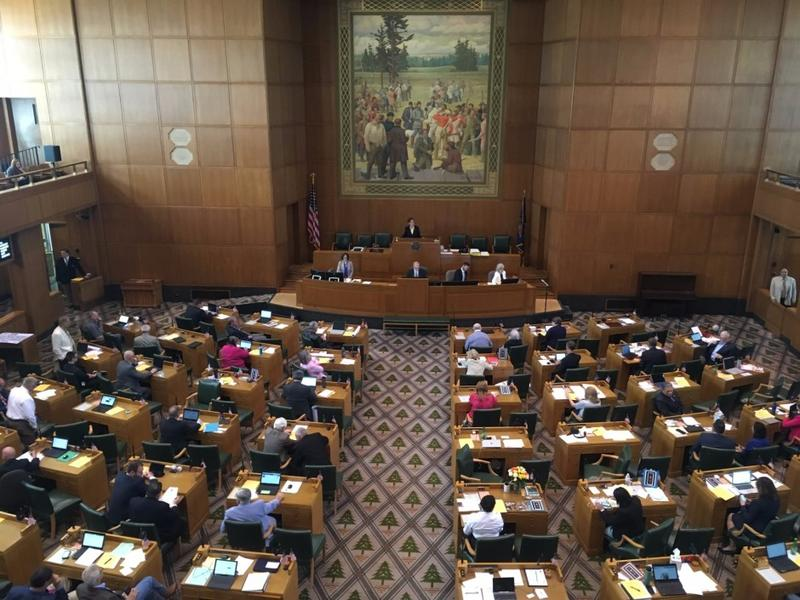 Members of Oregon's House of Representatives meet during the last day of the 2017 legislative session on Friday, July 7, 2017.