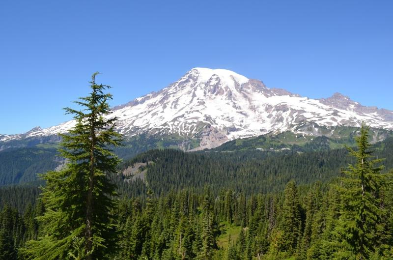 Mt. Rainier National Park could soon have cell phone access, at Paradise and on nearby hikes.