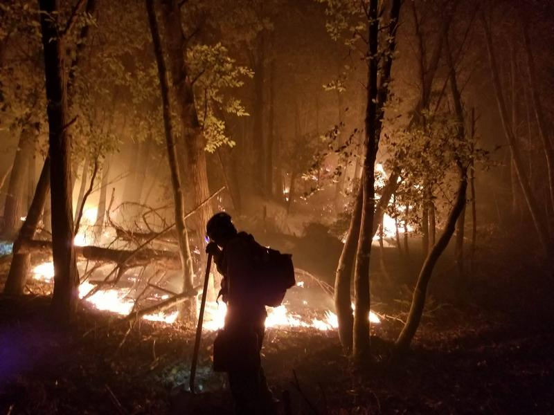 A firefighter worked to build a fire line inside the Rogue River-Siskiyou National Forest while the Chetco Bar Fire still burned in August.