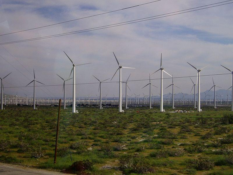 Wind farms like this one in California are a growing part of Northwest energy production.