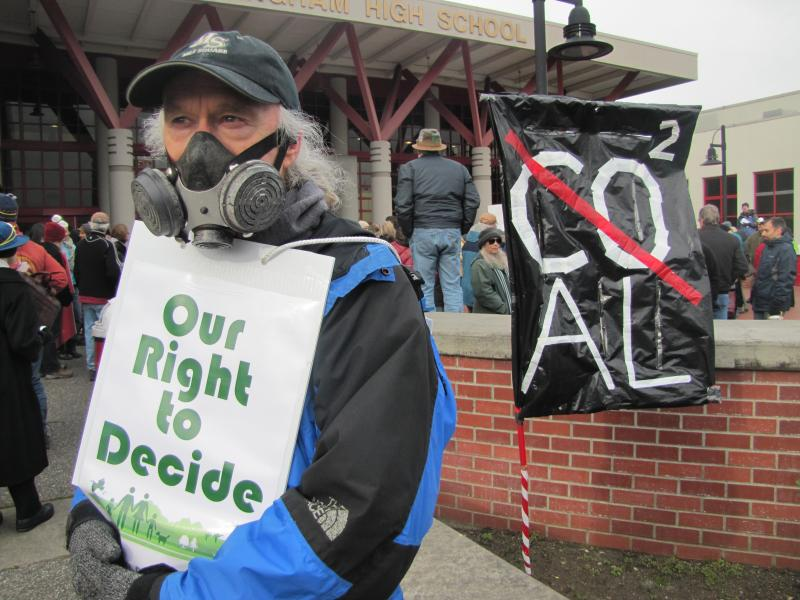 Some protestors wore gas masks in opposition to a proposed bulk export terminal in Bellingham.