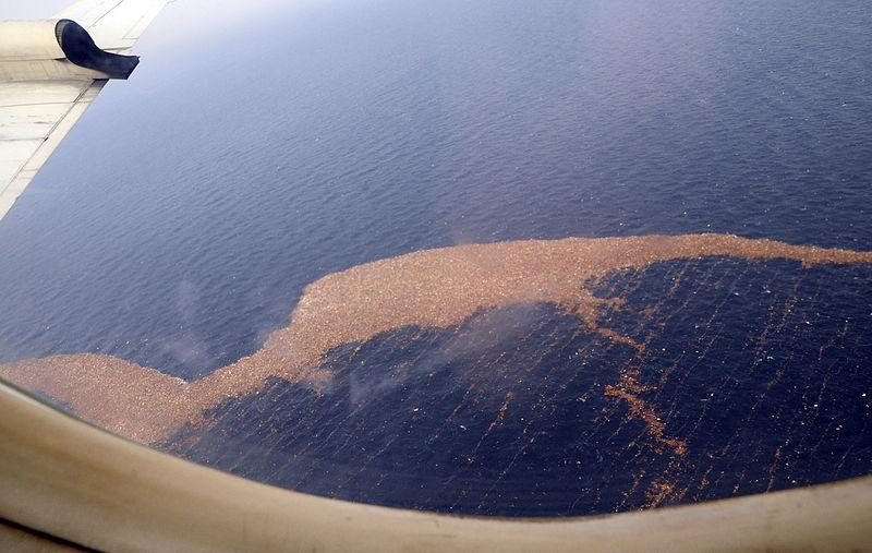 Debris in the Pacific Ocean off the coast of Japan after tsunami.
