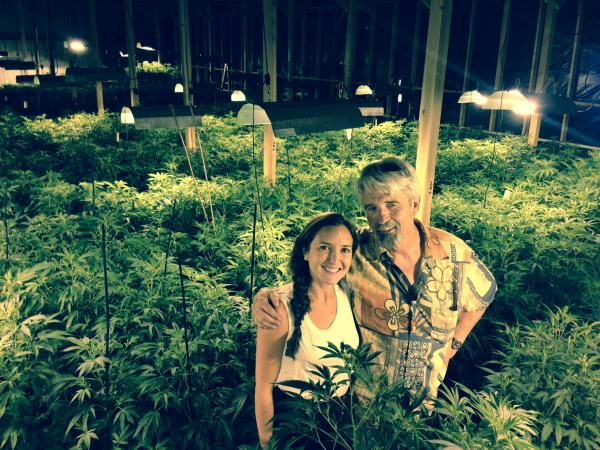 Eric Cooper and Katey Cooper stand amid their flowering marijuana. Their business, named Monkey Grass, in Wenatchee, Wash., is one of the largest marijuana grows licensed by Washington state so far. In Washington 79 producers are licensed to grow 566,000 square feet of pot plants. Only a few producers will be ready with product when the state plans to license about 20 stores in on July7th.