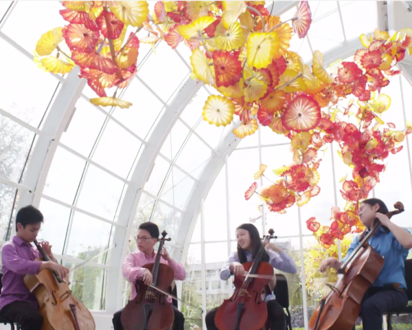 A screenshot of the Konpeito Cello Quartet playing in front of a Chihuly glass sculpture at Chihuly Garden and Glass in Seattle.