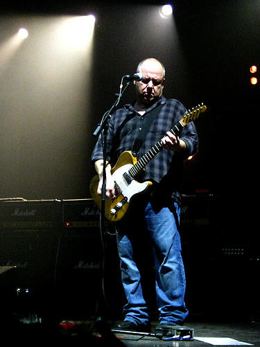 This year, bands from the 90s -- like the Pixies, fronted by guitarist/signer Frank black (pictured) -- have emerged from the shadows to release great new records.