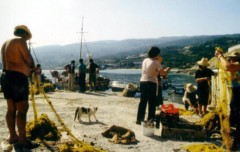 """The Greek island of Ikaria is one of five """"Blue Zones"""" where people live long, healthy, happy lives."""