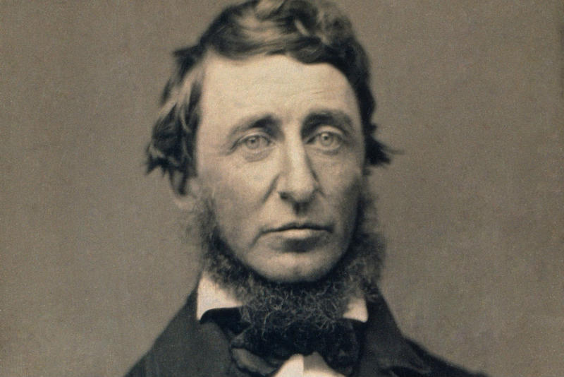 the life and times of henry david thoreau Enjoy the best henry david thoreau quotes at brainyquote quotations by henry david thoreau, american author, born july 12, 1817 share with your friends.