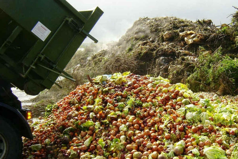 Frontloader dumping wasted produce.