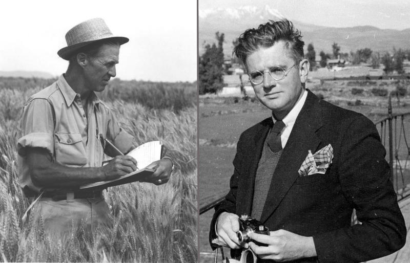 "Norman Borlaug, (left) the ""wizard,"" and William Vogt, the ""prophet"""