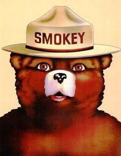 Smokey Bear has been an iconic U.S. Forest Service mascot for 69 years.