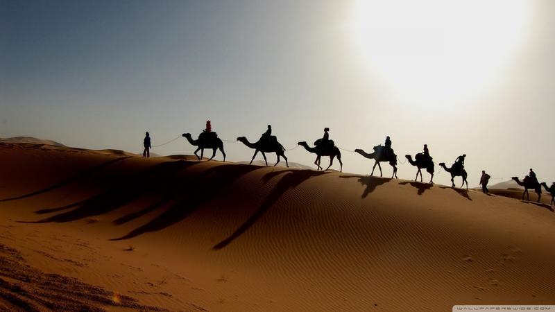 Desert Caravan Wallpaper 1920x1080 Desert, Caravan