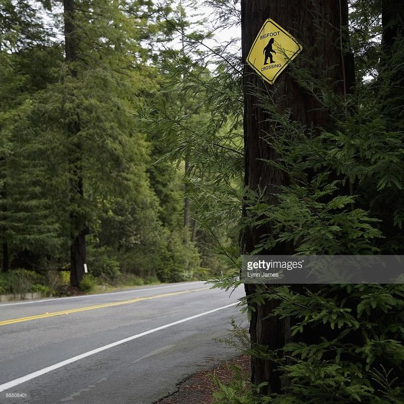 http://www.gettyimages.com/detail/photo/bigfoot-crossing-sign-on-side-of-road-high-res-stock-photography/88508401?et=e5mjM9BNT7RnZOHo20nPog&referrer=http%3A%2F%2Fredriverradio.org%2Fpost%2Fshadow-files-big-foot-legend