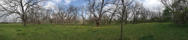 A native pecan grove graces one part of this central Texas ranch on the banks of the San Gabriel River.