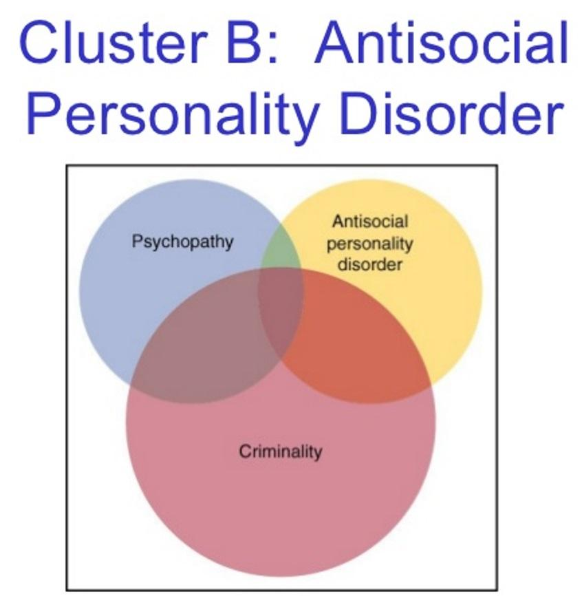 an overview of anti social personality disorder Antisocial personality disorder is one of the hardest personality disorders to treat sociopathic personality sociopathy personality disorder - antisocial.
