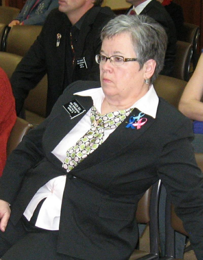 Karen Soli in a meeting room at the 2013 Legislative Session.