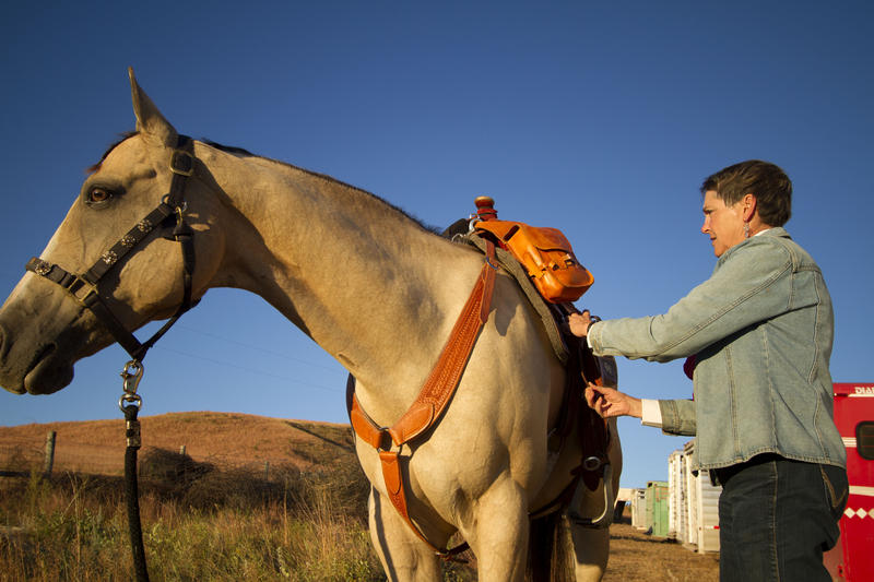 Suzy Thyssen prepares her horse that she will ride for the Buffalo Roundup early morning on Friday, Sep 25.