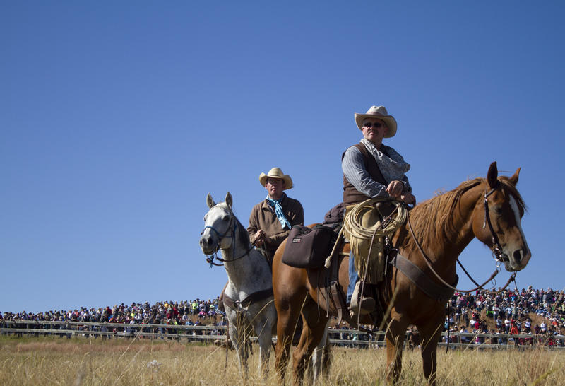 Thousands of people watch the Buffalo Roundup from Custer State Park early Friday morning.