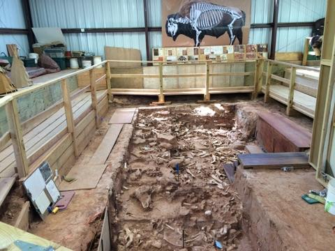 The site is home to hundreds of buffalo bones dating from the late 1500s to 1800.