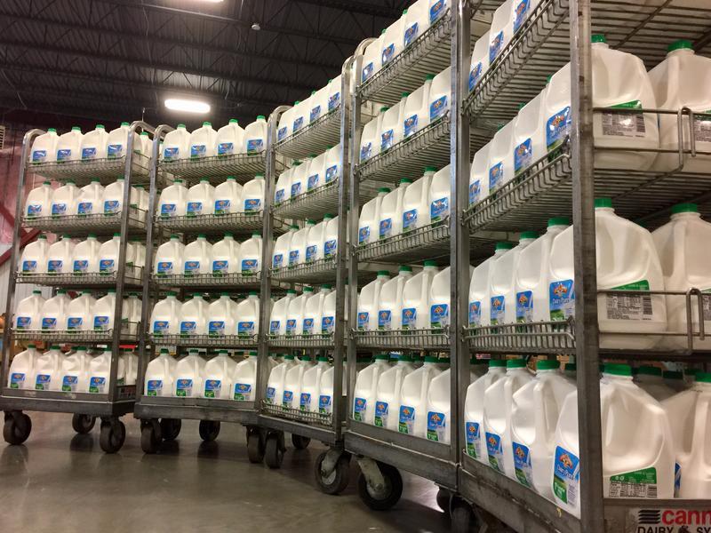 Feeding South Dakota recieves the first installment of 400 gallons of milk.