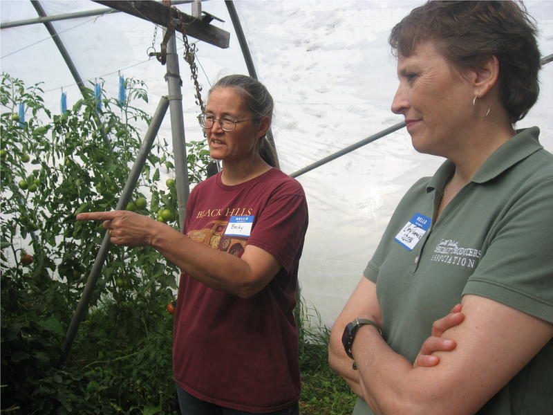 Becky Kirby, left, talks tomatoes with Cory Tomovick.